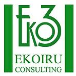 EKOIRU CONSULTING